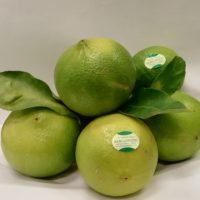 Bergamotto: proprietà, valori nutrizionali