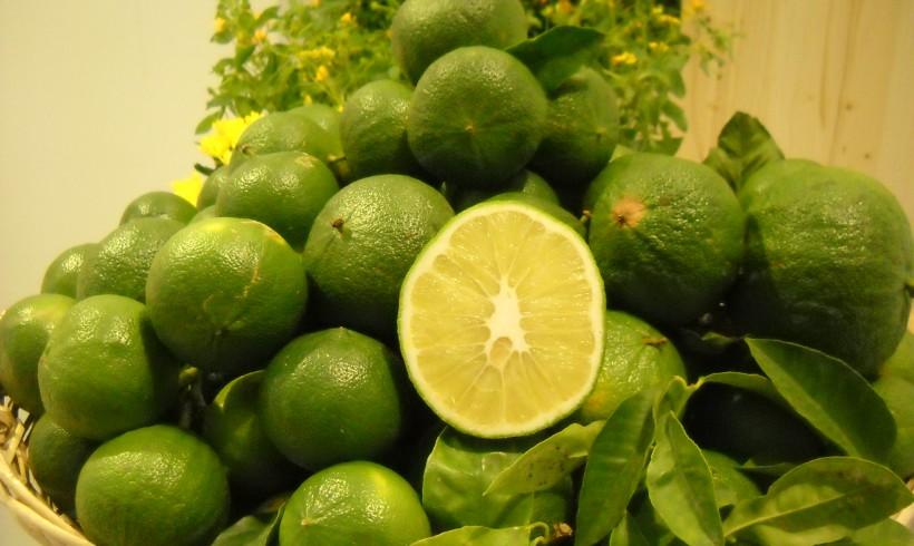 Beneficial properties of bergamot