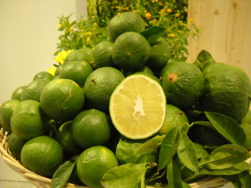 Beneficial properties of bergamot