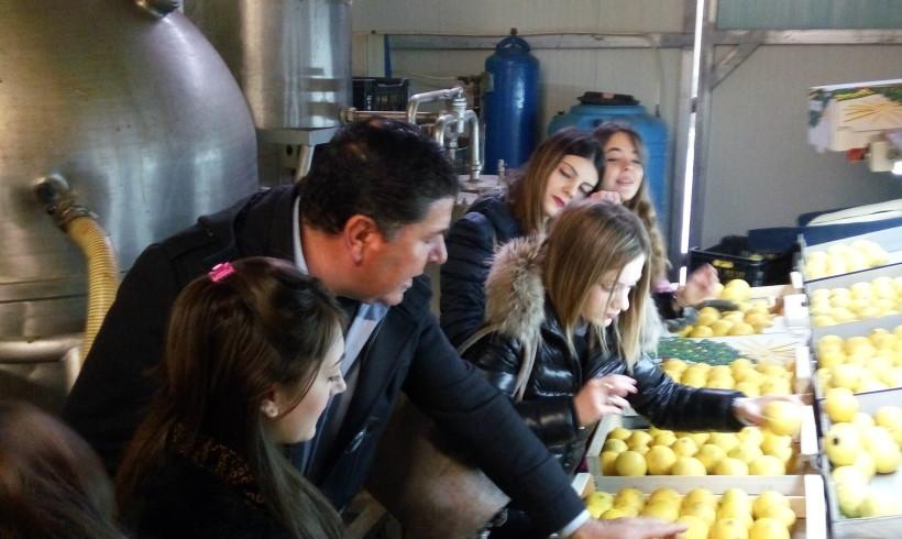 Azienda Agricola Patea visita: del Liceo Artistico di Locri e Istituto Commerciale di Siderno